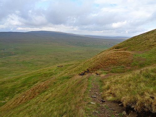Buckden Pike in the distance