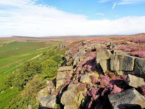 Looking back along Burbage Edge