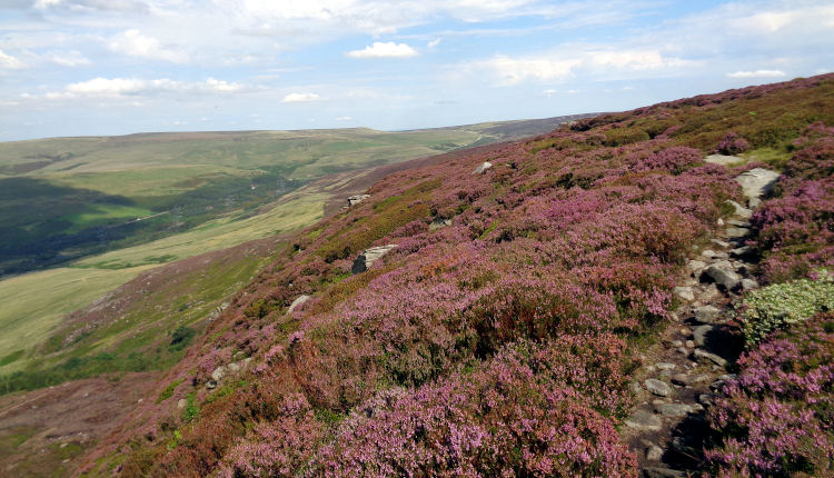 Bleaklow North Edge