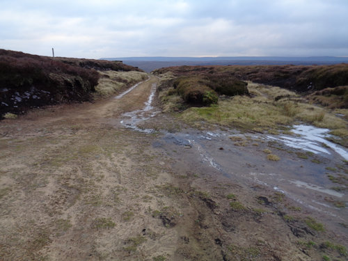 On Ridgewalk Moor